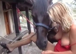Blonde slut is enjoying her stallion at the farm