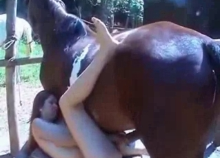Crazy jockey enjoys bestiality with a stallion